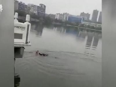 七旬京剧票友正排练,转眼跳湖救落水者