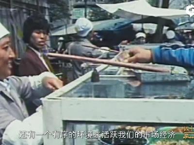 新浪江苏感恩改革开放40年独家专访王欣