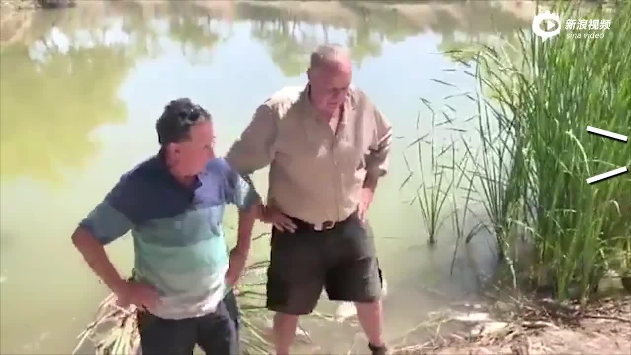 视频-澳洲官员手捧死鱼探讨环境问题 下一秒当场呕