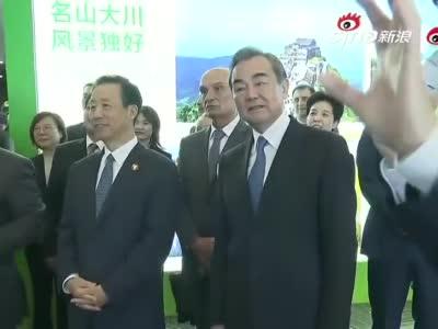 外交部全球推介湖南:浏阳烟花惊艳全场