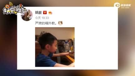视频:林志颖解释儿子Kimi名字由来 致敬偶像基米莱科宁