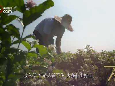 【70年70城】清远快3技巧,记住南宁!在这里,推动中国与东盟贸易发展