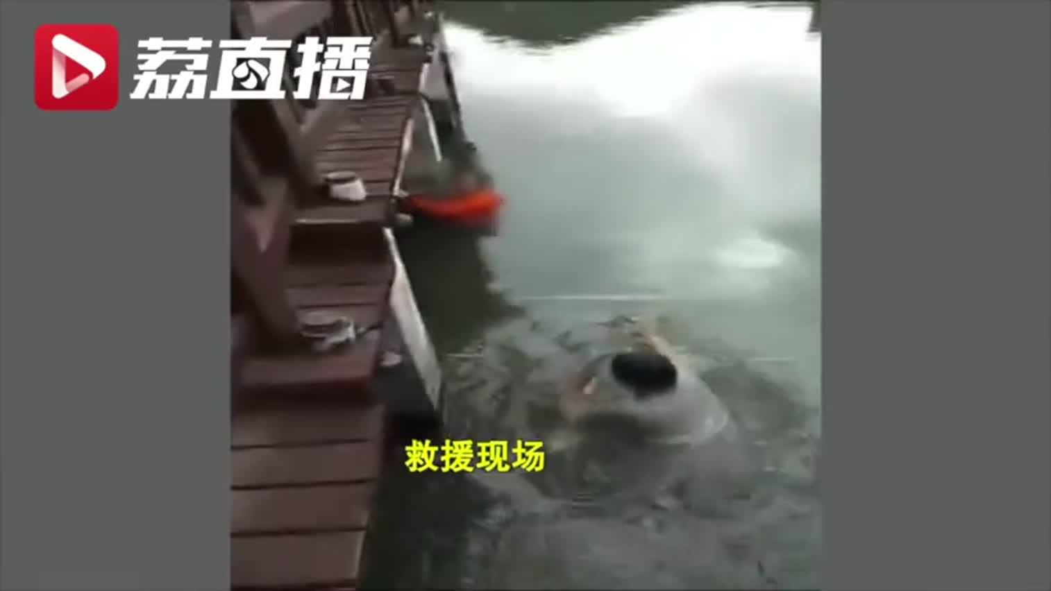 视频-女子为给新鞋拍照发朋友圈跌入河中 我怎么那