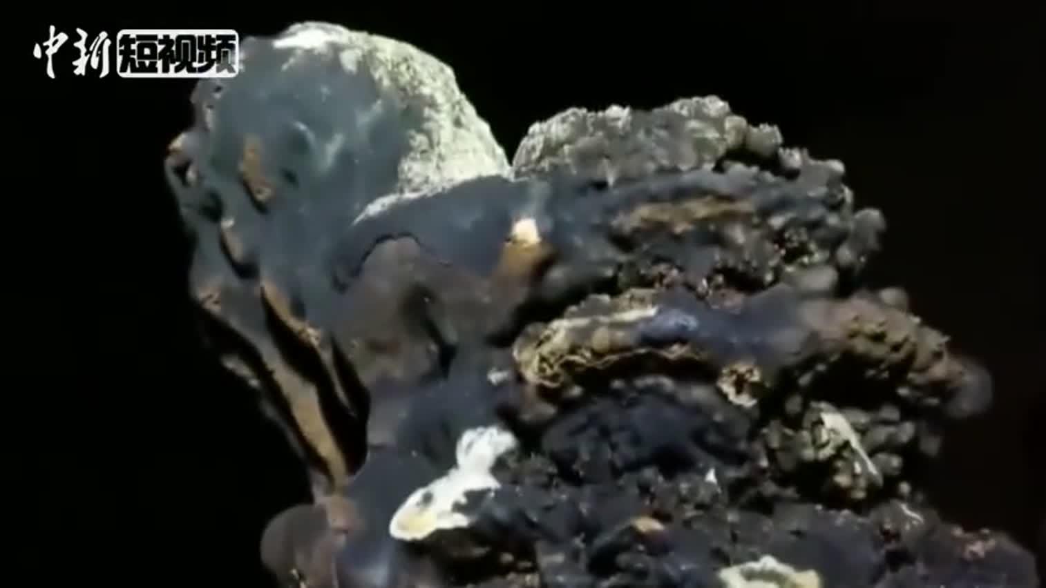 视频|广西又发现世界级天坑 最大深度达300余米