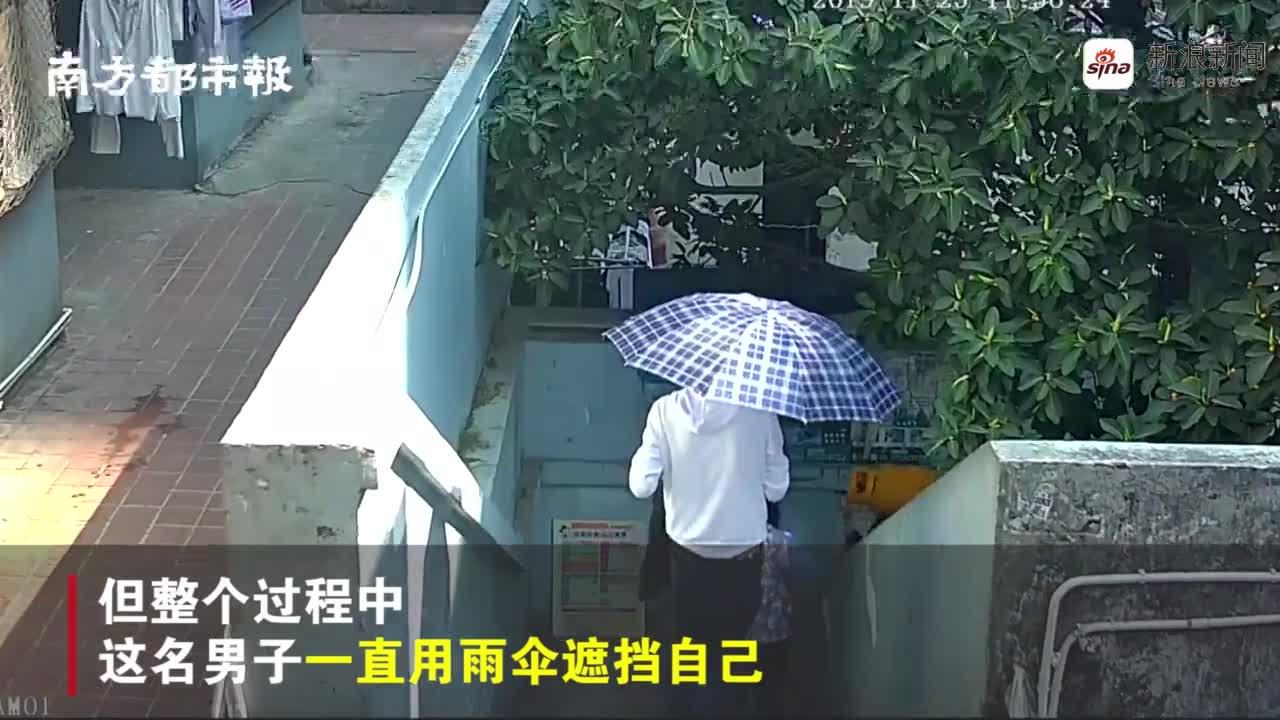 视频-晴天打伞有猫腻?深圳一男子靠伞遮脸躲避监控