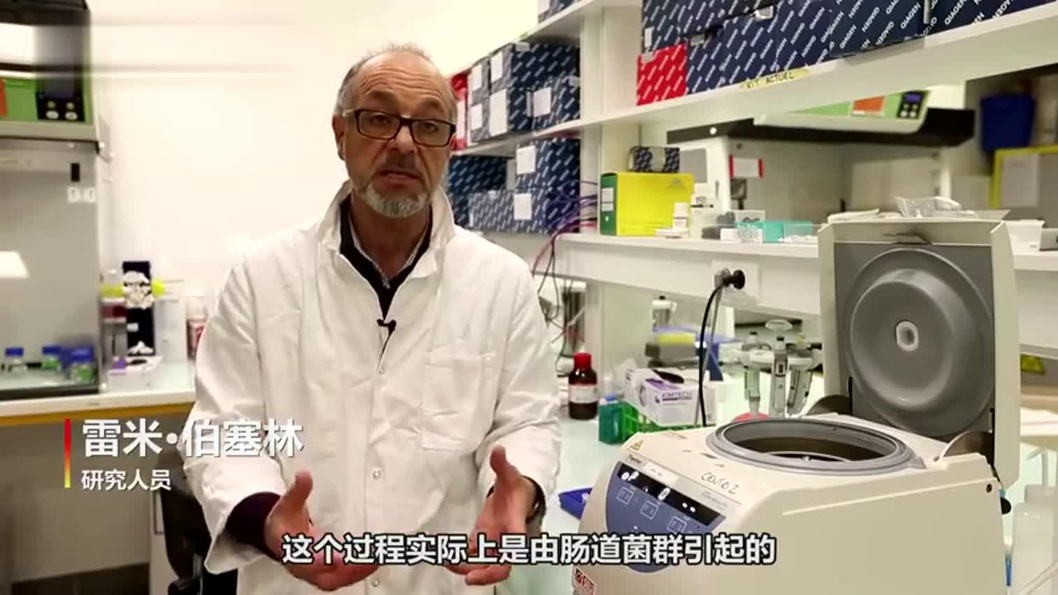 视频-摒弃强制饲喂 法国科学家利用细菌养出天然鹅