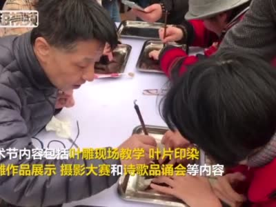 上海推出落叶艺术节 市民街头感受落叶文化-中新网视频