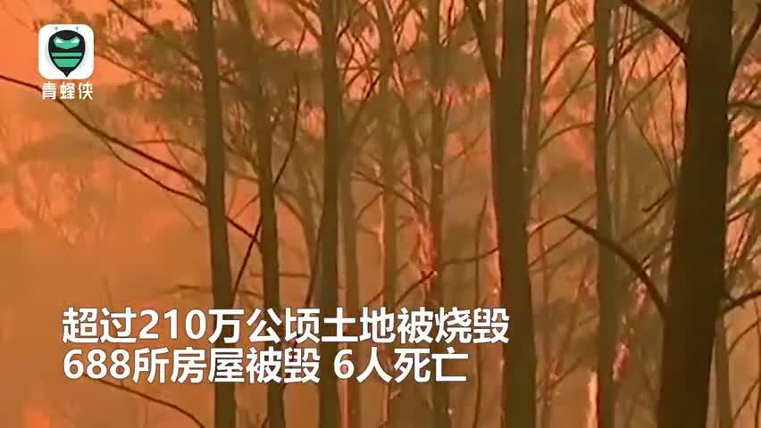 视频:澳大利亚山火持续肆虐 灰烬染黑悉尼海滩