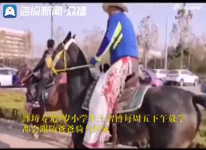 视频-山东这对父子骑马上学父子火了 网友:比劳斯