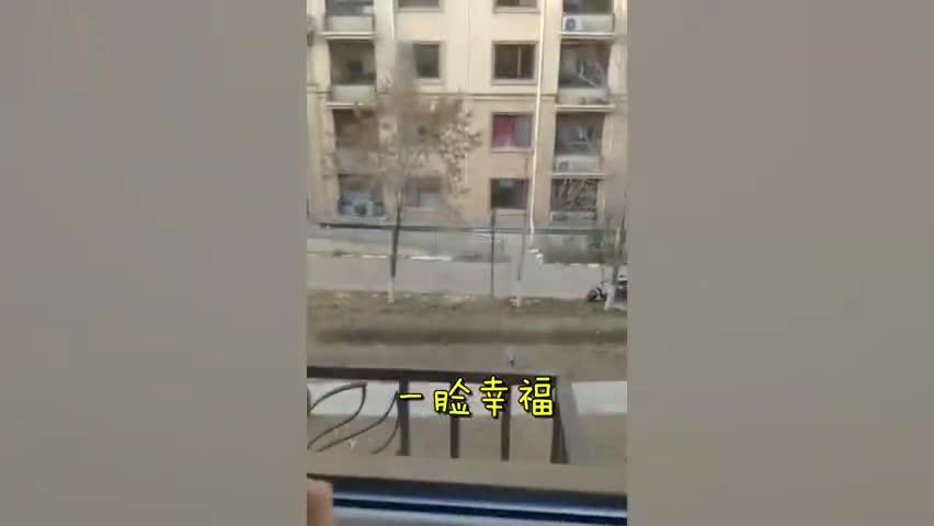 视频|3岁女儿趴窗台上1小时没动 原来在看别人家