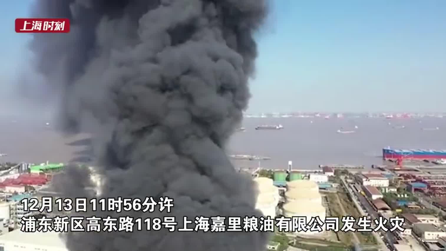 视频-上海外高桥一粮油公司发生火情 现场浓烟滚滚