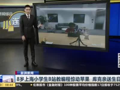 视频|8岁上海小学生B站教编程惊动苹果 库克亲送生日祝福