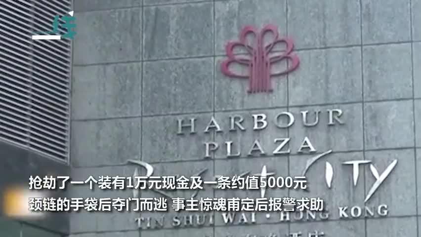 视频|香港2男子抢劫内地女游客 闯入酒店拳打脚踢