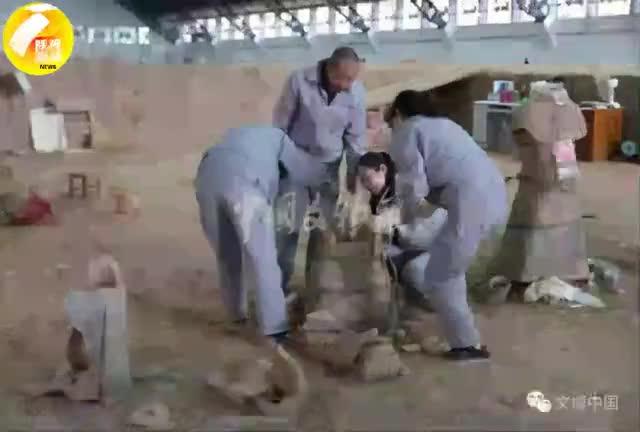 视频|兵马俑一号坑最新发掘成果 一种新兵马俑被发