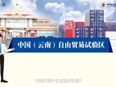 中国(云南)自由贸易试验区惠民福利看这里