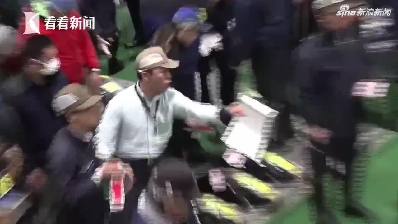 """视频-日本金枪鱼新年拍卖会 """"鱼王""""拍出近2亿天"""