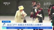 哈里王子宣布退出王室 巨额花销从哪来?