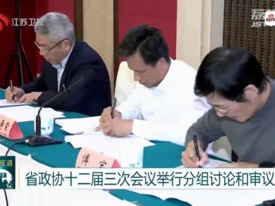江苏省政协十二届三次会议举行分组讨论和审议