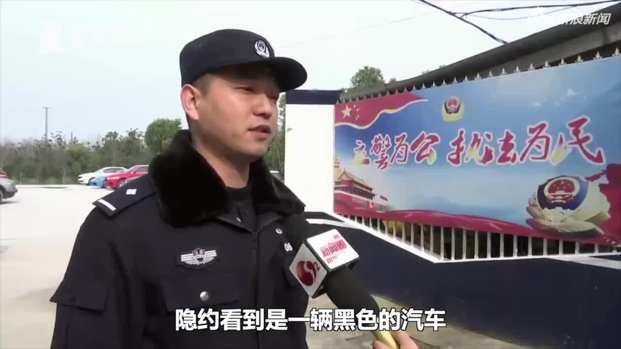视频-油门当刹车把车开下河 男子获救后淡定去上班