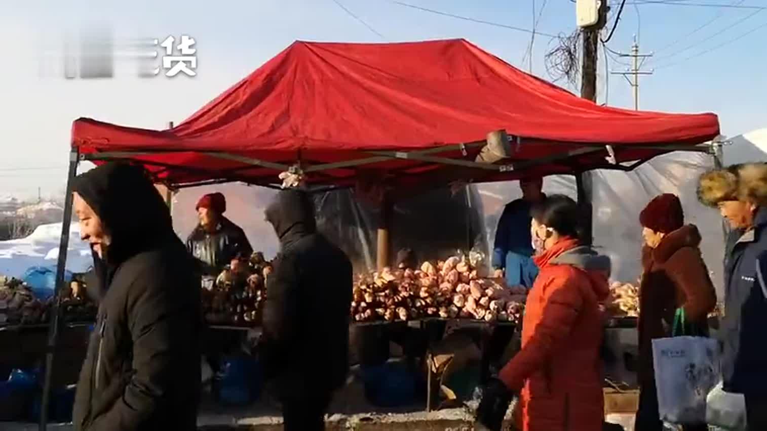视频-东北人过年有多欢乐?小村集市有两千米长,花