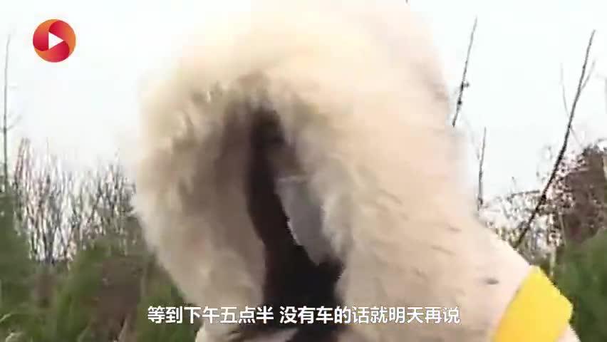 视频-护士寒风中等车逆行回武汉:我不能做逃兵