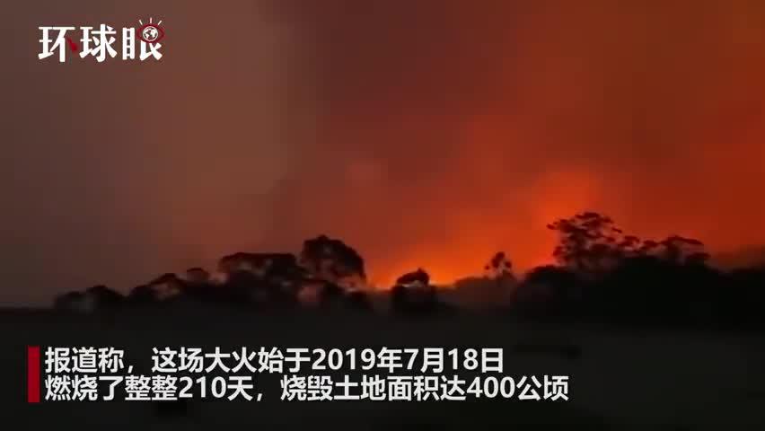 视频:210天烧毁400公顷!澳大利亚新南威尔士