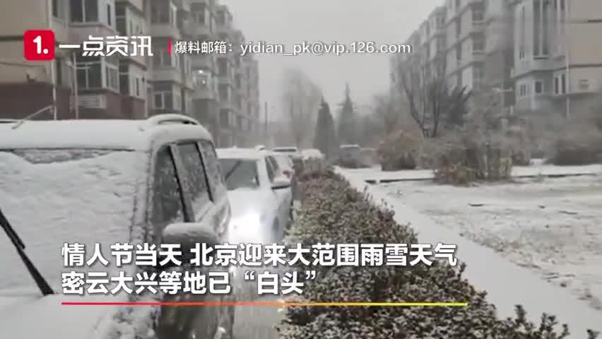 """视频-情人节北京迎降雪 密云大兴等地已""""白头"""""""