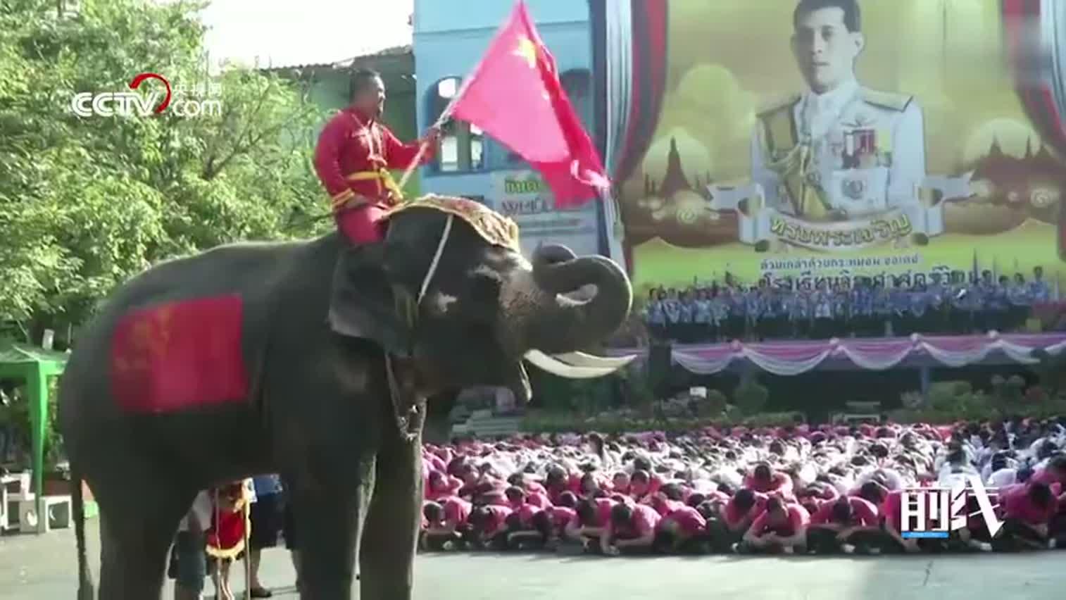 """视频-感谢!泰国三千学生齐比心 用中文高呼""""中国"""