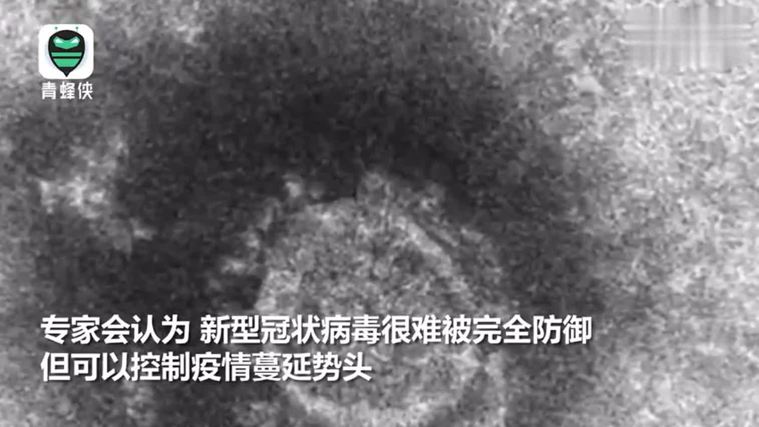 视频|日本专家:减缓疫情扩大 未来一至两周是决定