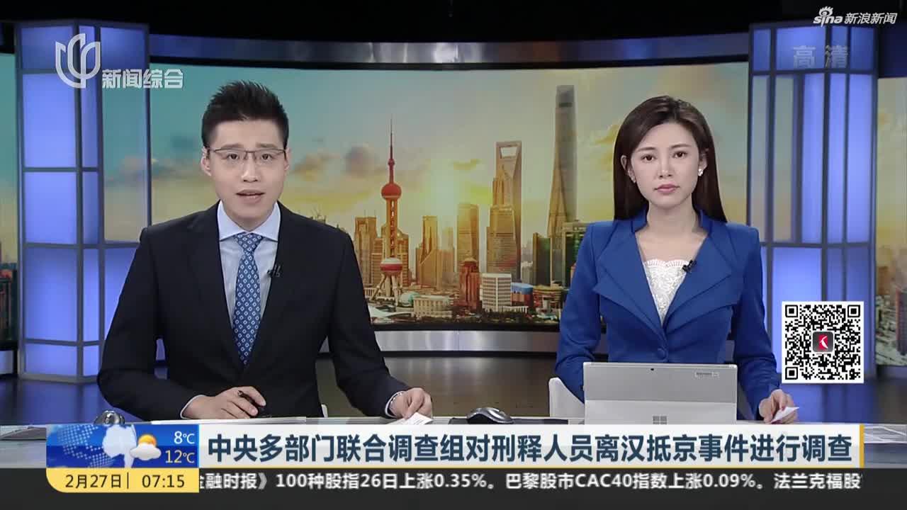 视频-中央多部门联合调查组对刑释人员离汉抵京事件