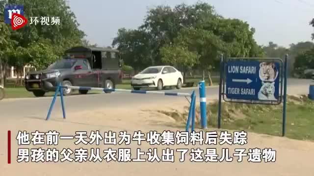 视频-巴基斯坦18岁少年翻进动物园被狮子吃掉 仅