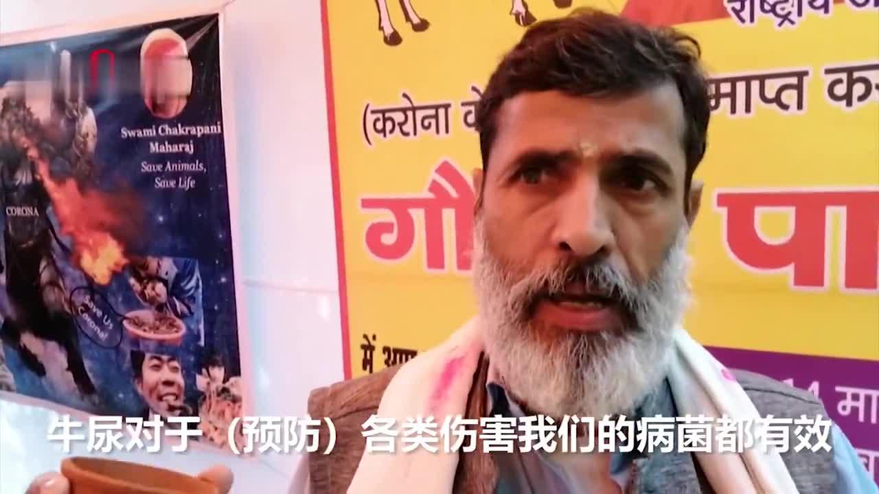 视频-新冠肺炎防治新方案?印度人饮牛尿防新冠肺炎