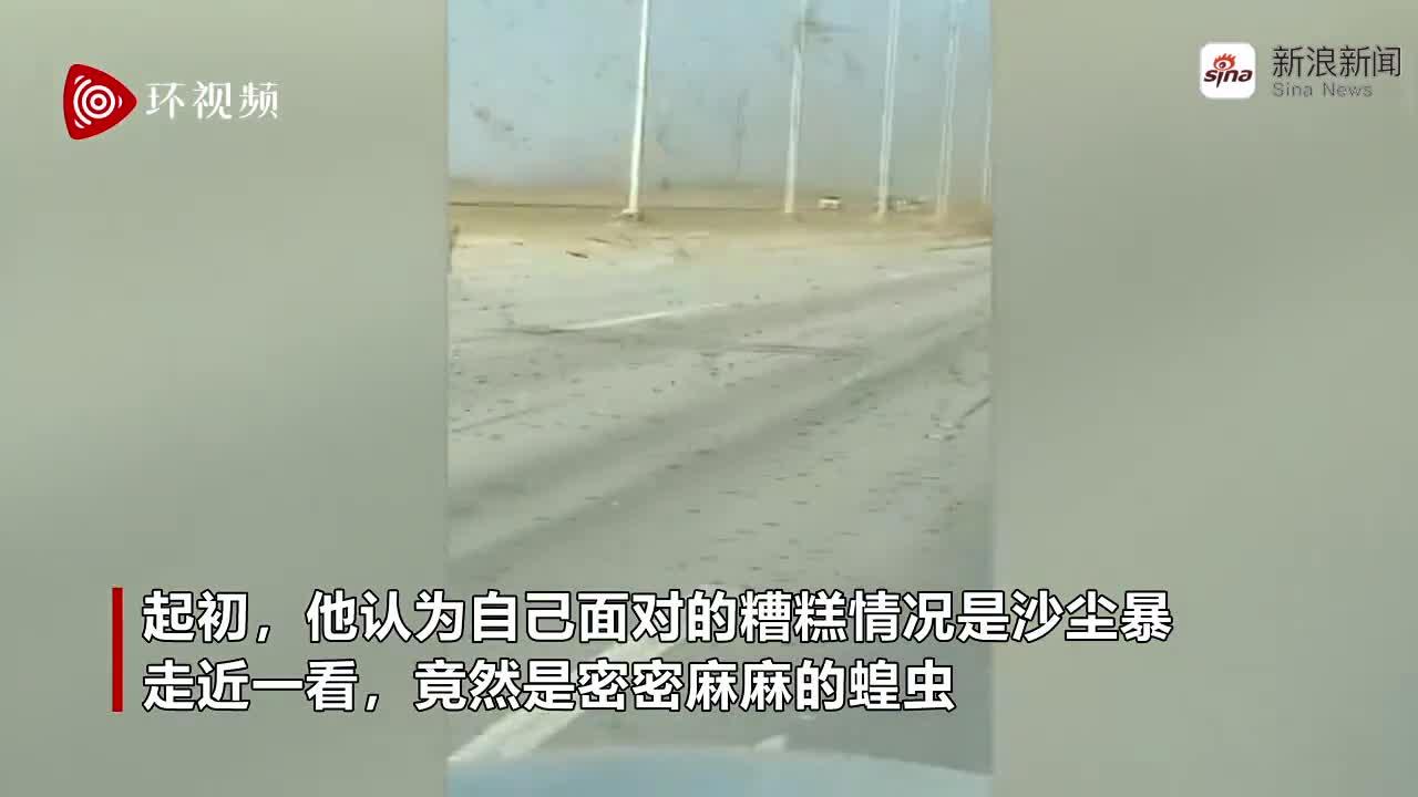 视频|巴基斯坦男子开车穿越蝗虫群被吓傻:本以为是