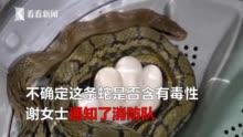http://www.feizekeji.com/chanjing/418202.html