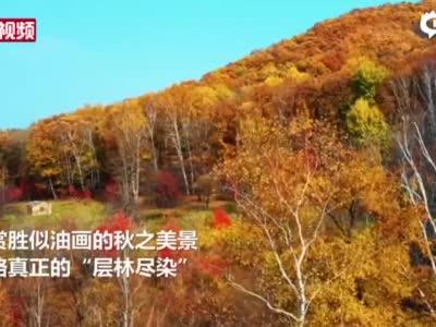 """秋色""""洒""""在吉林这片山"""
