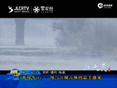 《禽戏冬江》一场与江城吉林的最美遇见