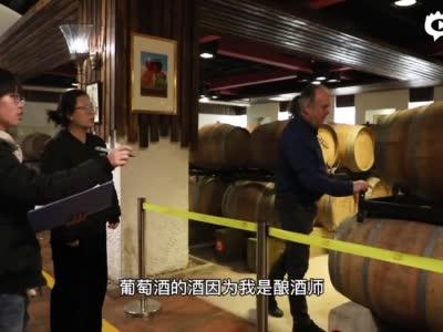 """开创中国有机高端葡萄酒先河 法国酿酒师布鲁诺打造 """"汉森""""味道"""