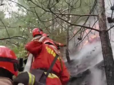 视频|多方力量协同 四川冕宁县森林火灾仍在扑救中