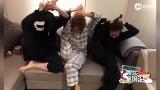视频:五缺一!蒋欣杨紫王子文劈腿造型喊话乔欣