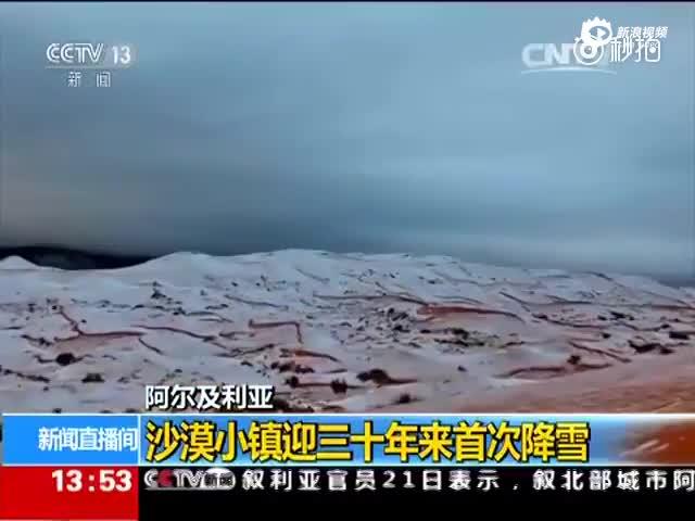 近40年来首次!撒哈拉沙漠下雪了