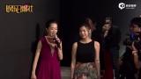 视频:安以轩婚宴星光熠熠 小S牵手老公破婚变传闻