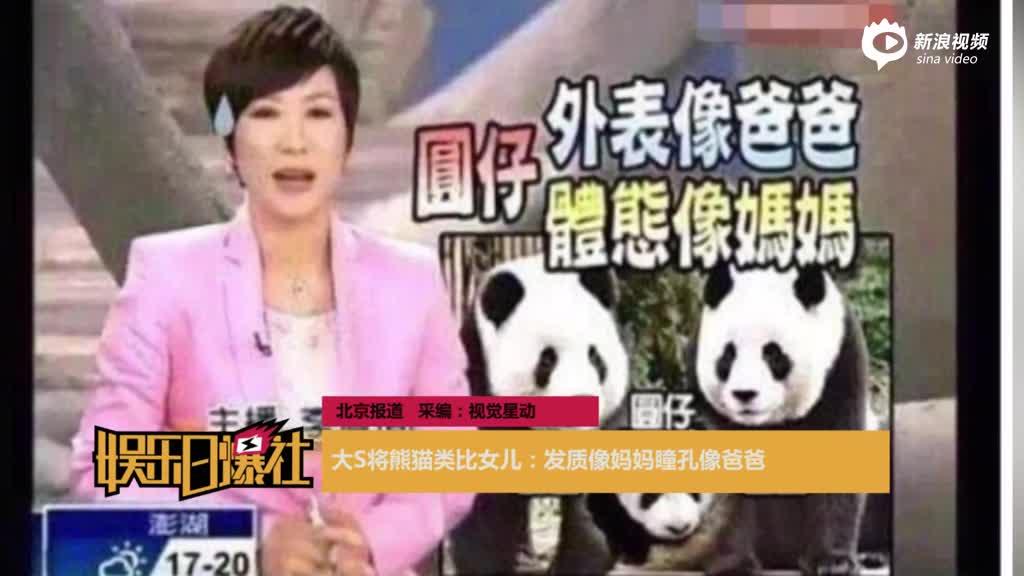 大S将熊猫类比女儿