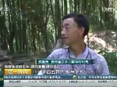 [第一时间]砥砺奋进的五年·绿色发展 绿色生活:贵州赤水退耕还竹 实现绿色发展