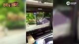 视频:熊梓淇车祸视频曝光 腰部被撞伤急送医院治疗