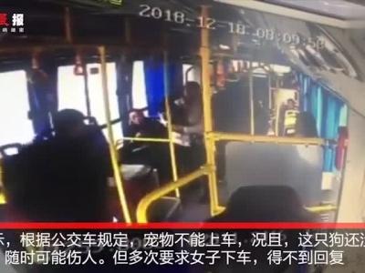 视频-女子早高峰抱狗乘公交遭拒载 全车人劝阻无果被迫换乘