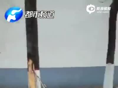 濮阳公交连撞路边多车 司机身亡 原因太令人心疼