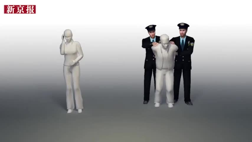 视频-中国夫妇在美国吵架互相推搡 男方涉家暴罪被