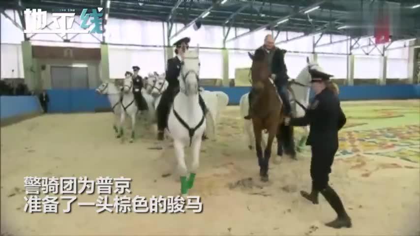 视频:羡慕!普京和女警一同骑马纪念妇女节 亲骑棕