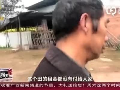 """四川乐山:农田变""""坟场""""农田主吐槽粮食没法种"""