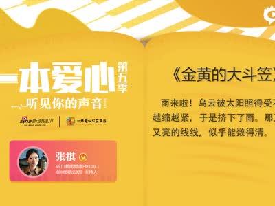 张祺《金黄的大斗笠》